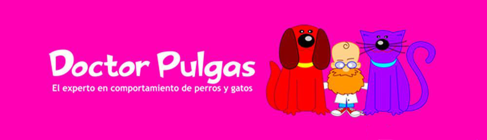Doctor Pulgas
